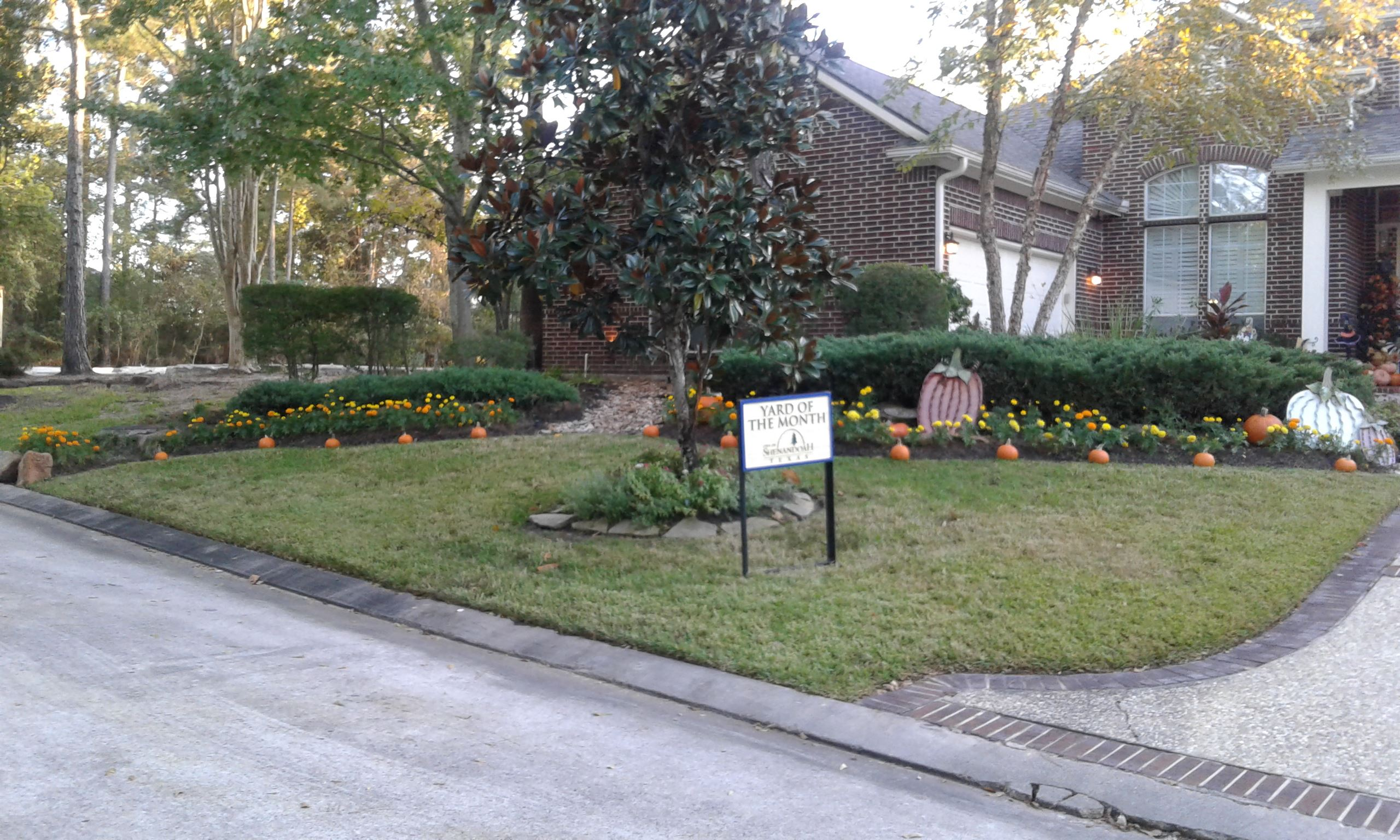 Yard of the Month Nov 2020